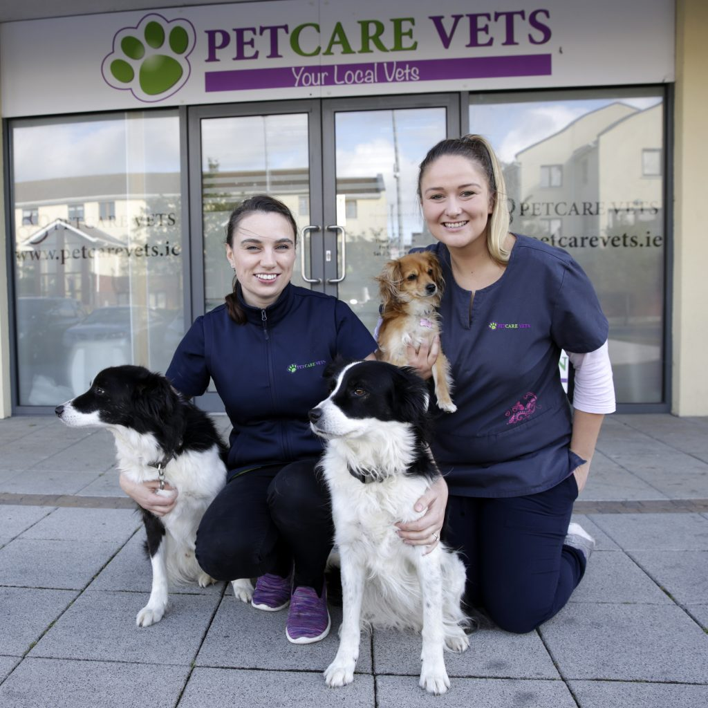 Some of the Petcare vets team